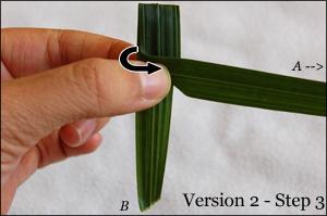 Palm Crosses Tutorial - 2.3