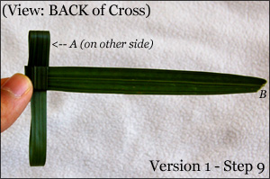 Palm Crosses Tutorial 1.9